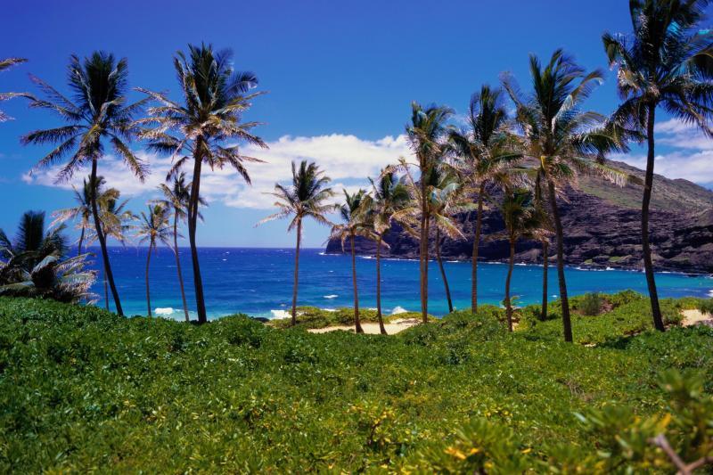 夏威夷大岛出发1日游:HO1-7028