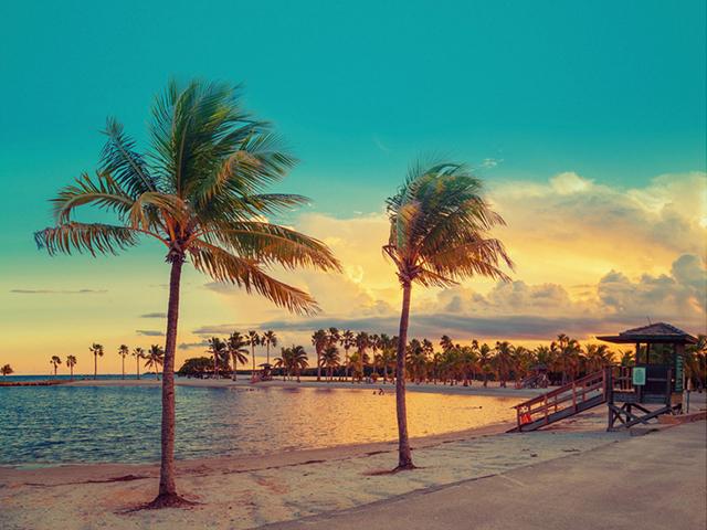 迈阿密出发5日游:MI5-6445