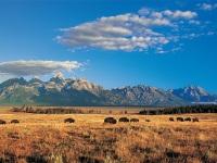 拉斯维加斯出发黄石公园、羚羊谷7日游:LV7-9308