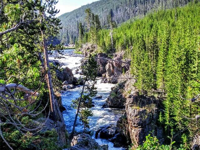 拉斯维加斯出发大峡谷、黄石公园、羚羊谷12日游:LV12-7833