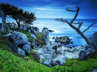 旧金山出发黄石公园、羚羊谷、包车自由行9日游:SF9-10923