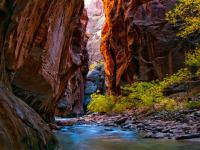 洛杉矶出发大峡谷、黄石公园、优胜美地、羚羊谷、墨西哥12日游:LA12-8138