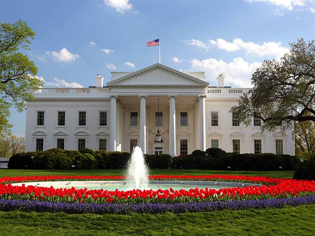 华盛顿出发包车自由行1日游:DC1-8650