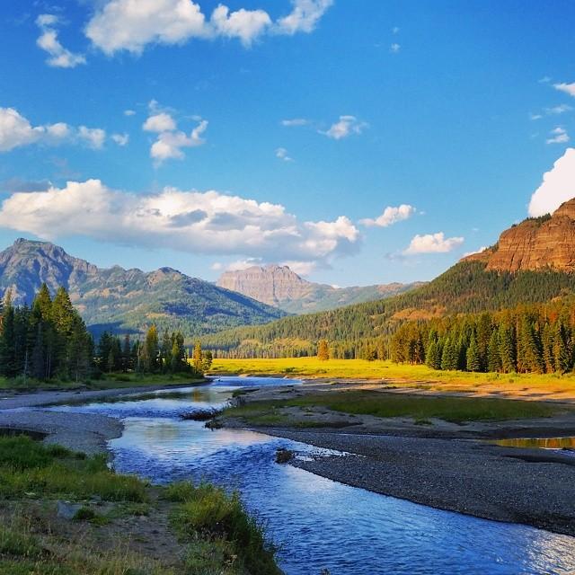 拉斯维加斯出发大峡谷、黄石公园、黄石公园小木屋、羚羊谷7日游:LV7-216