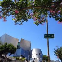 洛杉矶出发购物1日游:LA1-40