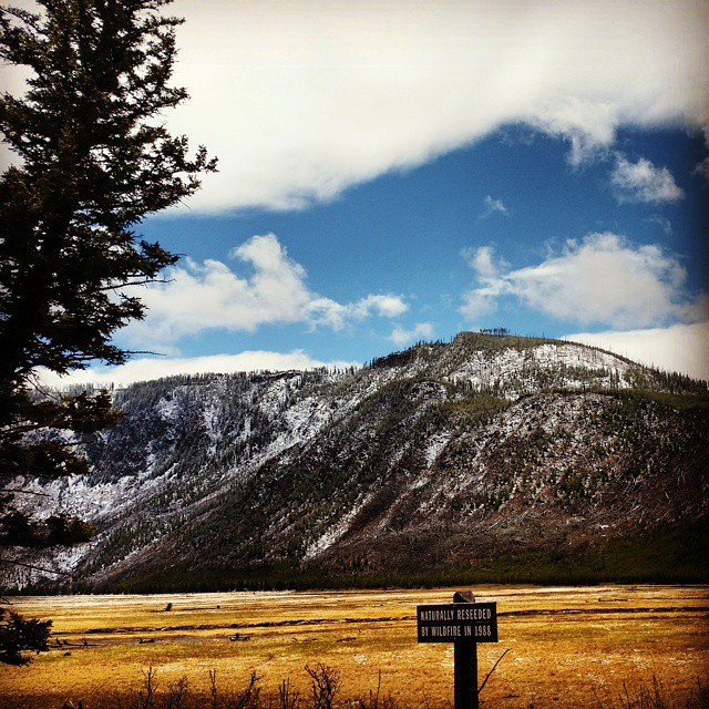 拉斯维加斯出发大峡谷、黄石公园、优胜美地、羚羊谷12日游:LV12-1874