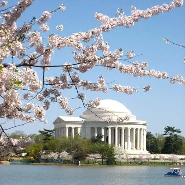 纽约出发华盛顿樱花节、尼亚加拉大瀑布、春假旅游3日游:NY3-5760