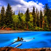 西雅图出发黄石公园7日游:SE7-5259