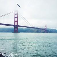 旧金山出发大峡谷、黄石公园、羚羊谷10日游:SF10-1979