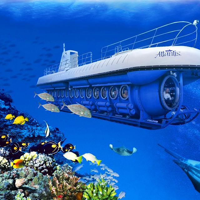 可爱岛出发1日游:HO-T-1101