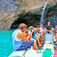 夏威夷大岛出发游船观光1日游:HO-T-1017