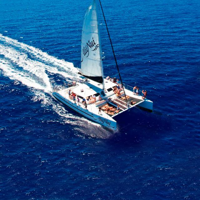 茂宜岛出发游船观光1日游:HO-T-1018