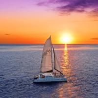 茂宜岛出发游船观光1日游:HO-T-1026