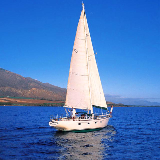 茂宜岛出发游船观光1日游:HO-T-1027