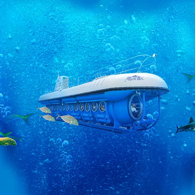 檀香山出发游船观光、美食品鉴1日游:HO-T-1039