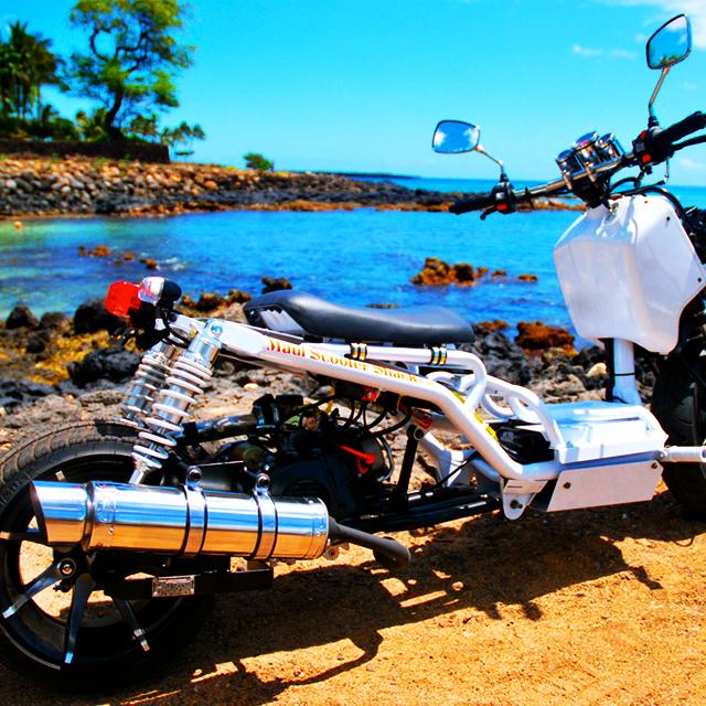 檀香山出发骑行1日游:HO-T-1058