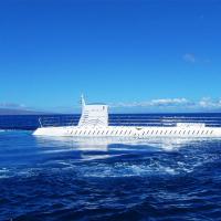 檀香山出发游船观光1日游:HO-T-1077