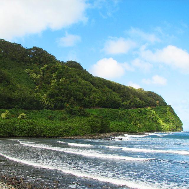 茂宜岛出发邮轮岸上游1日游:HO-T-1133
