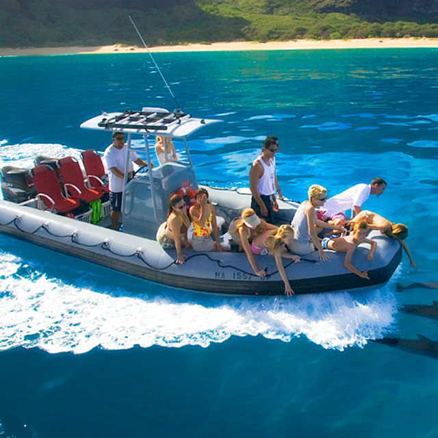 茂宜岛出发游船观光1日游:HO-T-1172