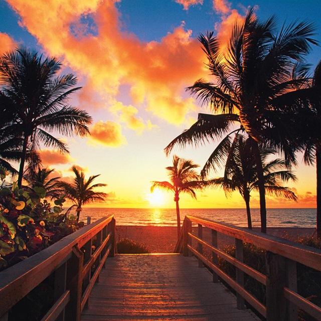迈阿密出发9日游:MI9-6017