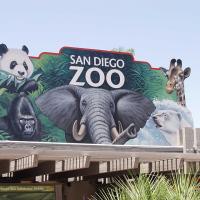 圣地亚哥出发景点门票1日游:SD-T-1615