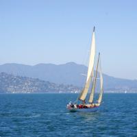 旧金山出发游船观光1日游:SF-T-552