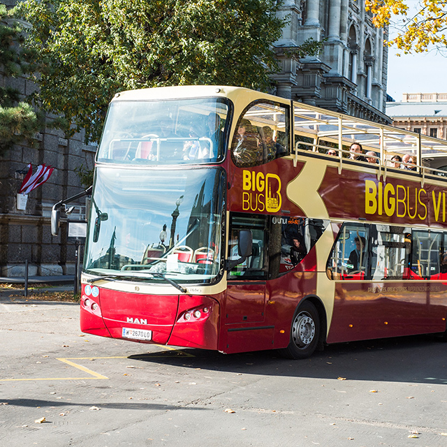 维也纳出发观光巴士1日游:VI-T-1749