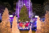 纽约出发圣诞跨年促销1日游:NY1-10799