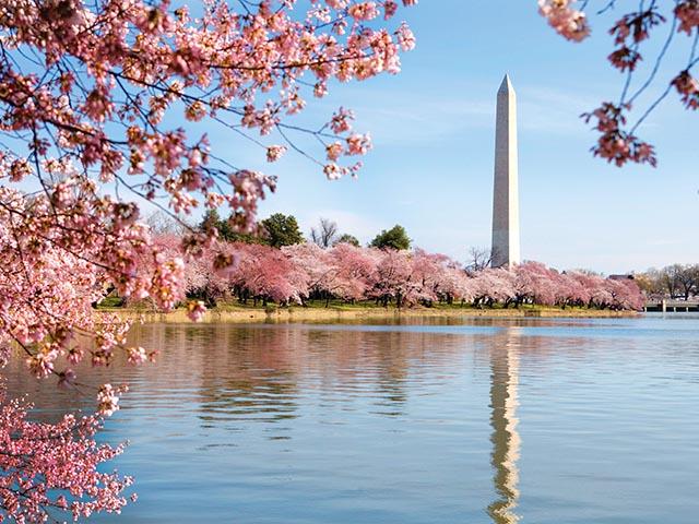 华盛顿出发1日游:DC1-2561
