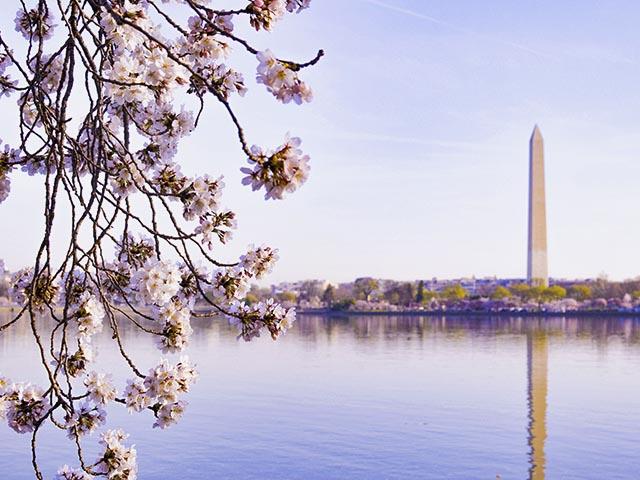 华盛顿出发1日游:DC1-2752