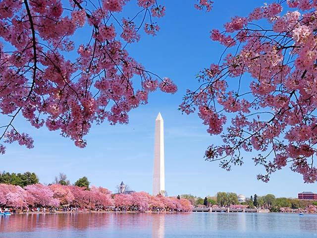 华盛顿出发1日游:DC1-2762