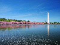 华盛顿出发1日游:DC1-2774
