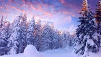 盐湖城出发大峡谷、黄石公园、冬季黄石7日游:SL7-6633