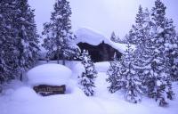盐湖城出发黄石公园、圣诞跨年促销5日游:SL5-6634