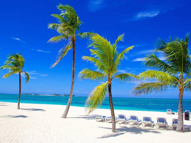 迈阿密出发8日游:MI8-7798