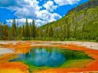 西雅图出发黄石公园4日游:SE4-8231