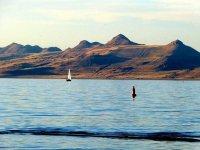 拉斯维加斯出发大峡谷、黄石公园、羚羊谷13日游:LV13-9557